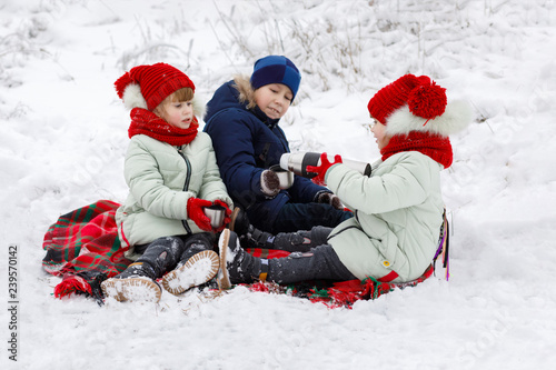 Children are sitting on a plaid and drinking tea in winter.