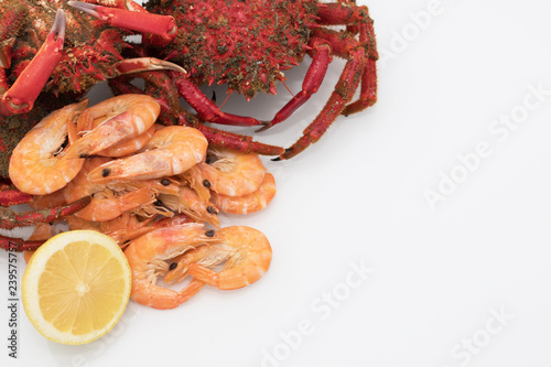 fresh and wild galician seafood