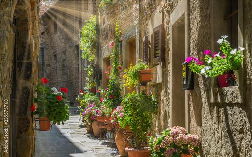 Naklejka premium Malowniczy widok w Anghiari, w prowincji Arezzo, Toskania, Włochy.