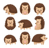 Fototapeta Fototapety na ścianę do pokoju dziecięcego - Cute hedgehog in various poses set, prickly animal cartoon character with funny face vector Illustration on a white background