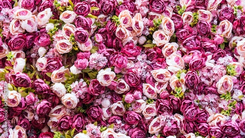 Poster Fleur Amazing pink and white roses wall decoration, hand made, Sochi.