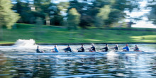 Rowers On The River Torrens
