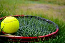 Yellow Tennis Ball With Tennis Racquet On The Green Grass