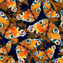 Seamless Pattern Of Butterflies On The Background Of Flowers Painted In Watercolor.