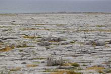 Wild Atlantic Way - Fanore Beg...