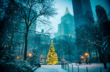 Fototapeta Nowy Jork - Scenic winter evening view of the glowing lights of a Christmas tree surrounded by the skyscrapers of Midtown Manhattan in Madison Square Park, New York City