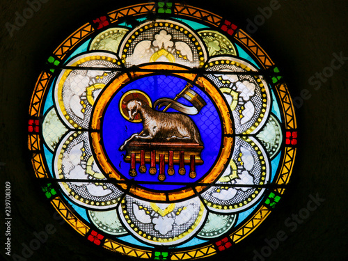 Agnus Dei or Lamb of God - Stained Glass in Antibes Church Tablou Canvas