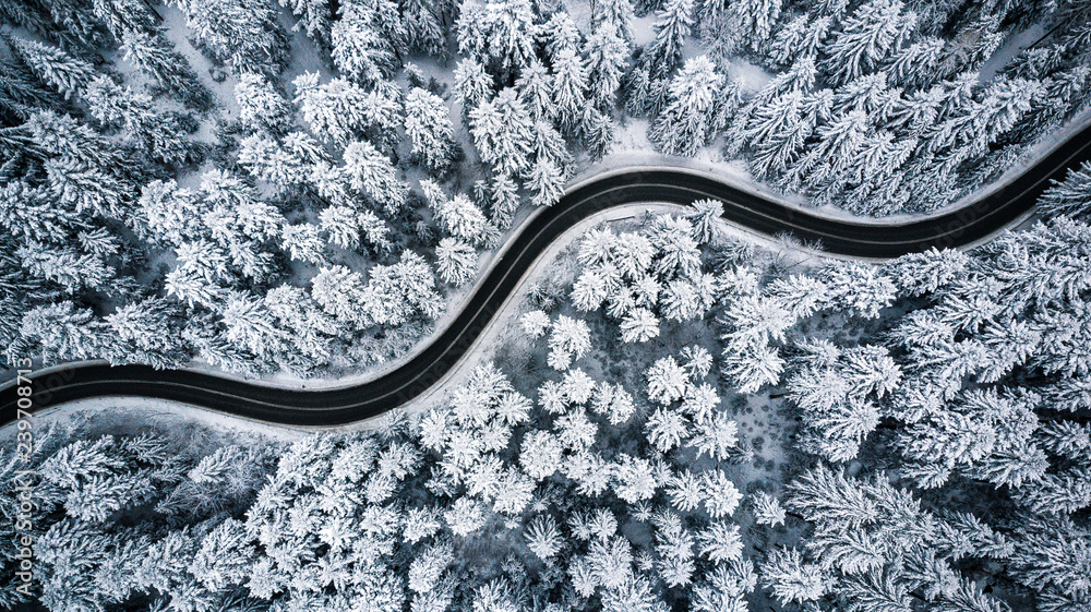 Fototapeta Curvy windy road in snow covered forest, top down aerial view