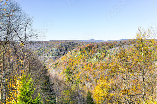 View of canaan valley mountains in Blackwater falls state park in West Virginia Wallpaper Mural