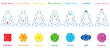 Chakras Of A Meditating Woman....