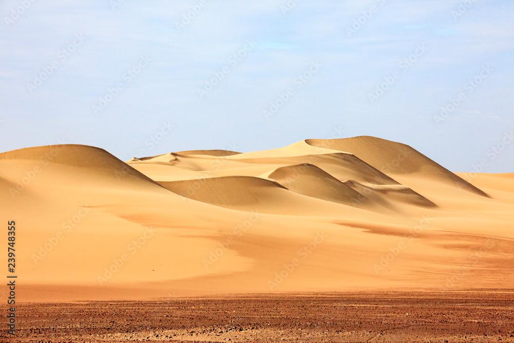Fototapety, obrazy: The desert in Paracas in Peru. Sun sea and sand