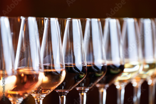 Wine glasses in a row Fototapeta