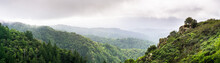 Panoramic View Of The Green Hills And Valleys Of Santa Cruz Mountains On A Foggy Day, Castle Rock State Park, San Francisco Bay Area, California
