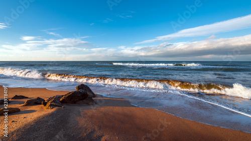 In de dag Schildpad Seashore at sunset time