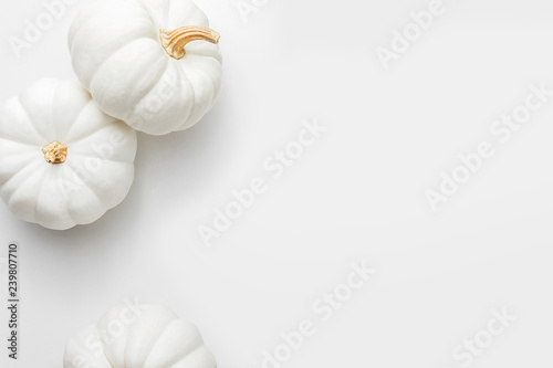 Fotomural  White pumpkins on a white background, creative flat lay thanksgiving concept, to