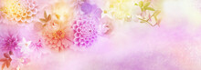 Beautiful Romance Flower Dahlia,roses Border For Header Background For Valentine's Day