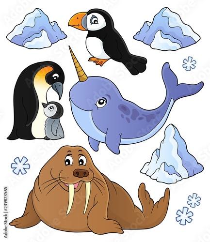 Winter animals topic set 1