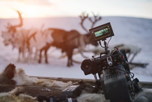 Close-up Of Video Camera On Background Of Winter Deers And Sunset.