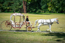 Bila Tserkva, Ukraine - SEP 2, 2017 A Carriage And A White Horse Passing Through A Summer Park
