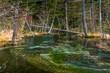 Tashiro Pond in Kamikochi, Japanese Alps, Chubu Sangaku National Park