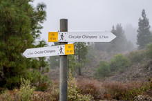 Chinyero Circular Hiking Path ...