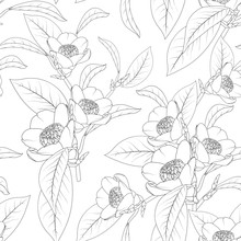Camellia Flowers Bouquet With Leaves Sketch Line Design Drawing. Floral Natural Seamless Pattern Texture. Flowering Plant Head Petals Bloom Blossom. Black And White Vector Design Illustration.