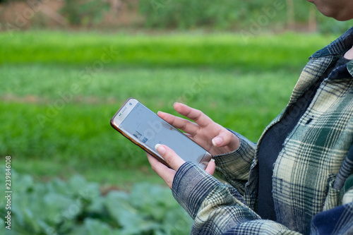 Deurstickers young farmer observing some charts vegetable filed in mobile phone, Smart Eco organic farm 4.0 technology concept, Agronomist in Agriculture Field read a report