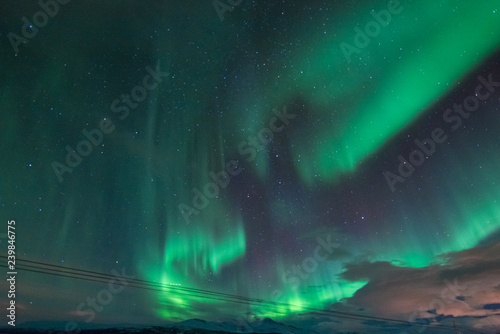 Poster Aurore polaire The polar arctic Northern lights aurora borealis sky star in Scandinavia Norway Tromso in the farm winter forest