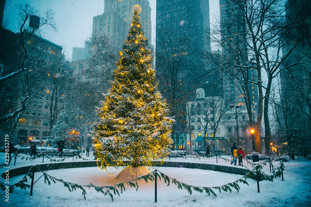 Fototapety, obrazy: Scenic winter evening view of the glowing lights of a Christmas tree surrounded by the skyscrapers of Midtown Manhattan in Madison Square Park, New York City