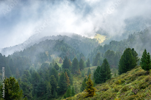 Montage in der Fensternische Gebirge Forest and pastures on the slopes of alpine mountains in the clouds