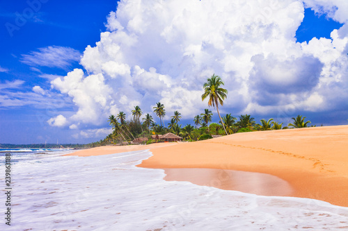 Beautiful wild beaches of Sri Lanka. tranquil Tangale, south of island
