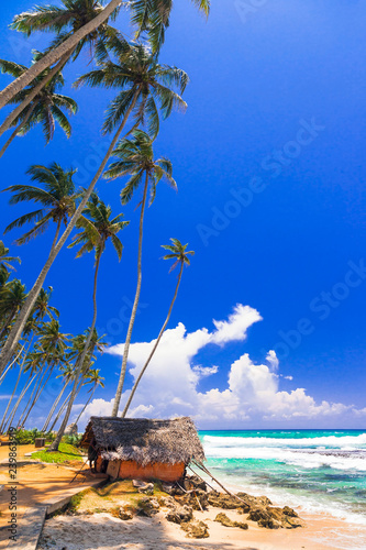 wild beautiful beaches of Sri Lanka, Weligama, south of island