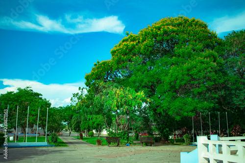 Plaza de la Ciudad de Machagay Canvas Print
