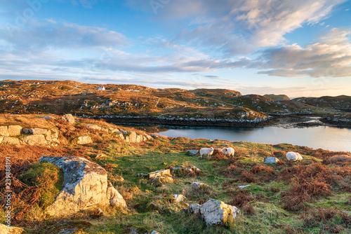 Fotografie, Obraz The Isle of Scalpay in Scotland