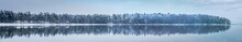 Great Panorama Of Winter Fores...