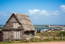 Abandoned Home On The Punta De...