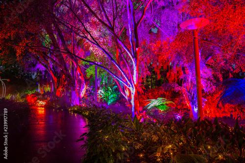 Photo  Roma Street Parklands, Brisbane, Australia.