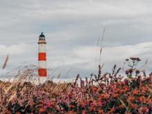 Tarbat Ness Lighthouse In North Scotland