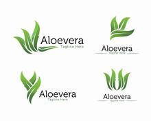 Fresh Aloe Vera Logo Design Vector, Cosmetic Or Shampoo Logo Template