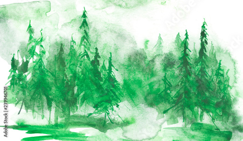 Printed kitchen splashbacks Watercolor Nature Watercolor coniferous forest, fir, pine, cedar. Vintage illustration of green on white isolated background. Watercolor countryside landscape. Abstract splash of paint.