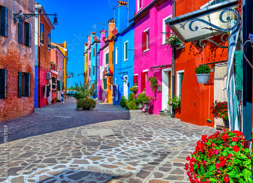 Fototapeta Street with colorful buildings in Burano island, Venice, Italy. Architecture and landmarks of Venice, Venice postcard obraz