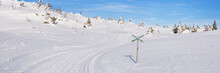 Cross-country Trail Through A Snowy Landscape In Trysil, Norway