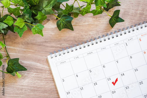 Canvastavla Calendar and check. Important schedule. カレンダーとチェック 重要な予定