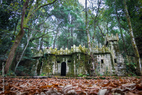 Remains of an old castle in the middle of the forest in Pontevedra, Galicia, Spain
