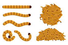 Flour Worms Vector Cartoon Set...