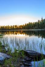Early Sunrise With Sunburst Through Trees