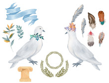 Pigeon Clip Art Digital Drawing Watercolor Bird Fly Peace Dove For Wedding Celebration Illustration Similar On White Background