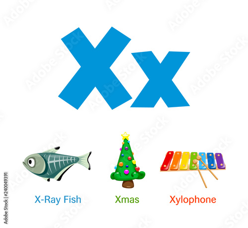 7 letter words that end in x children abc animal alphabet flashcard words with the 18012