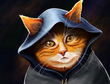 Gato De Capuz