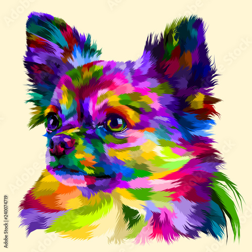 Платно  colorful head chihuahua